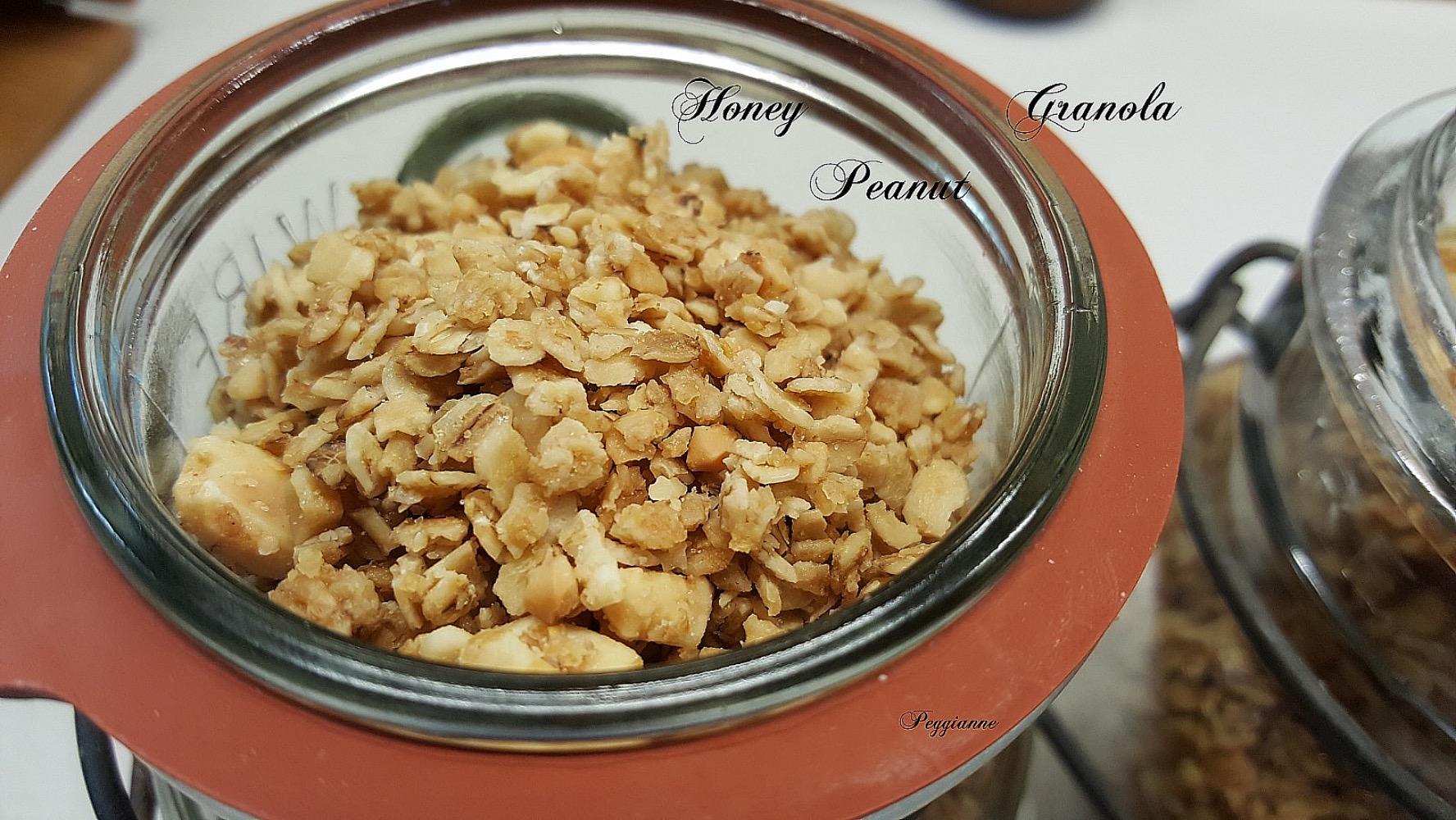 Honey Peanut Granola Peggianne
