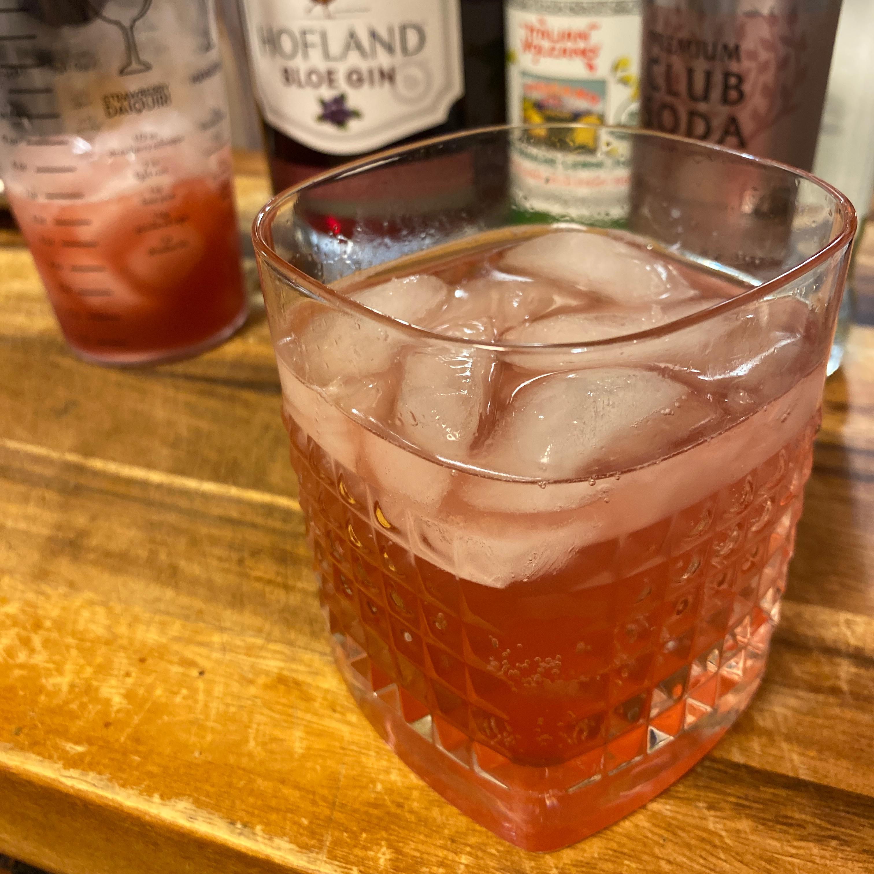 Sloe Gin Fizz Cocktail jtmiesen@gmail.com