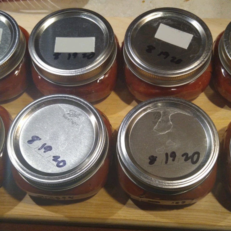 The Best Canning Salsa