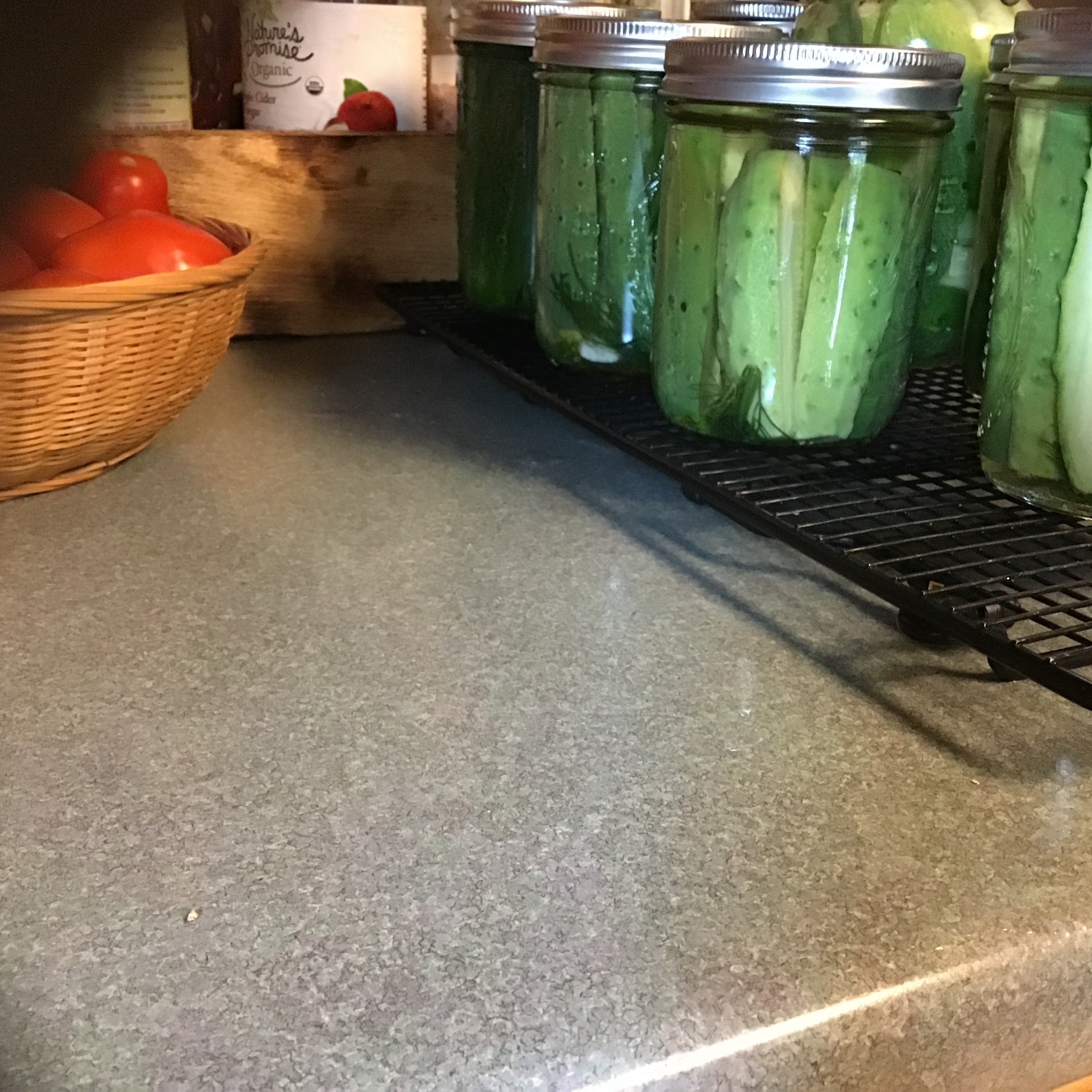 Refrigerator Garlic Dill Spears