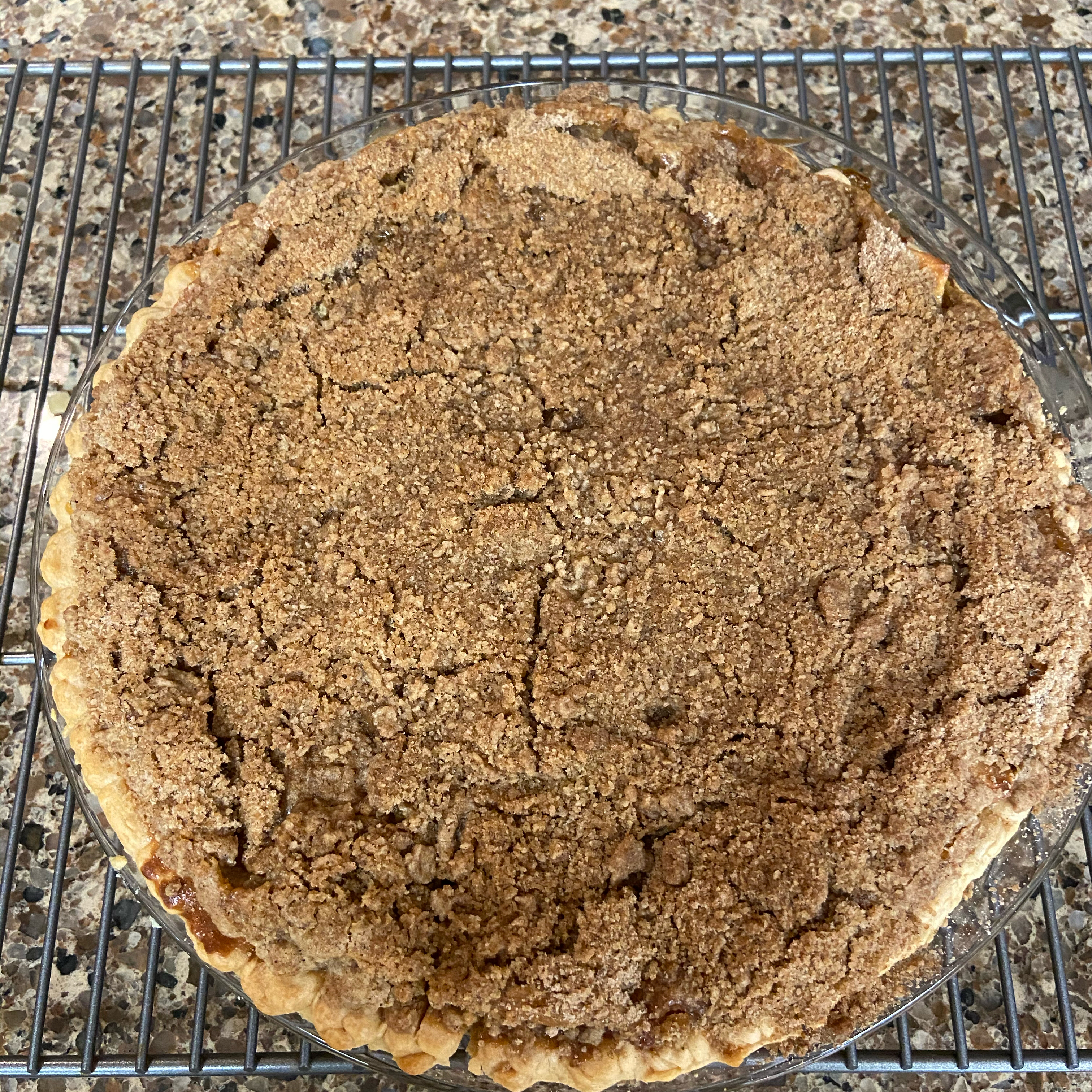 Deep Dish Ontario Apple Pie handyman24333