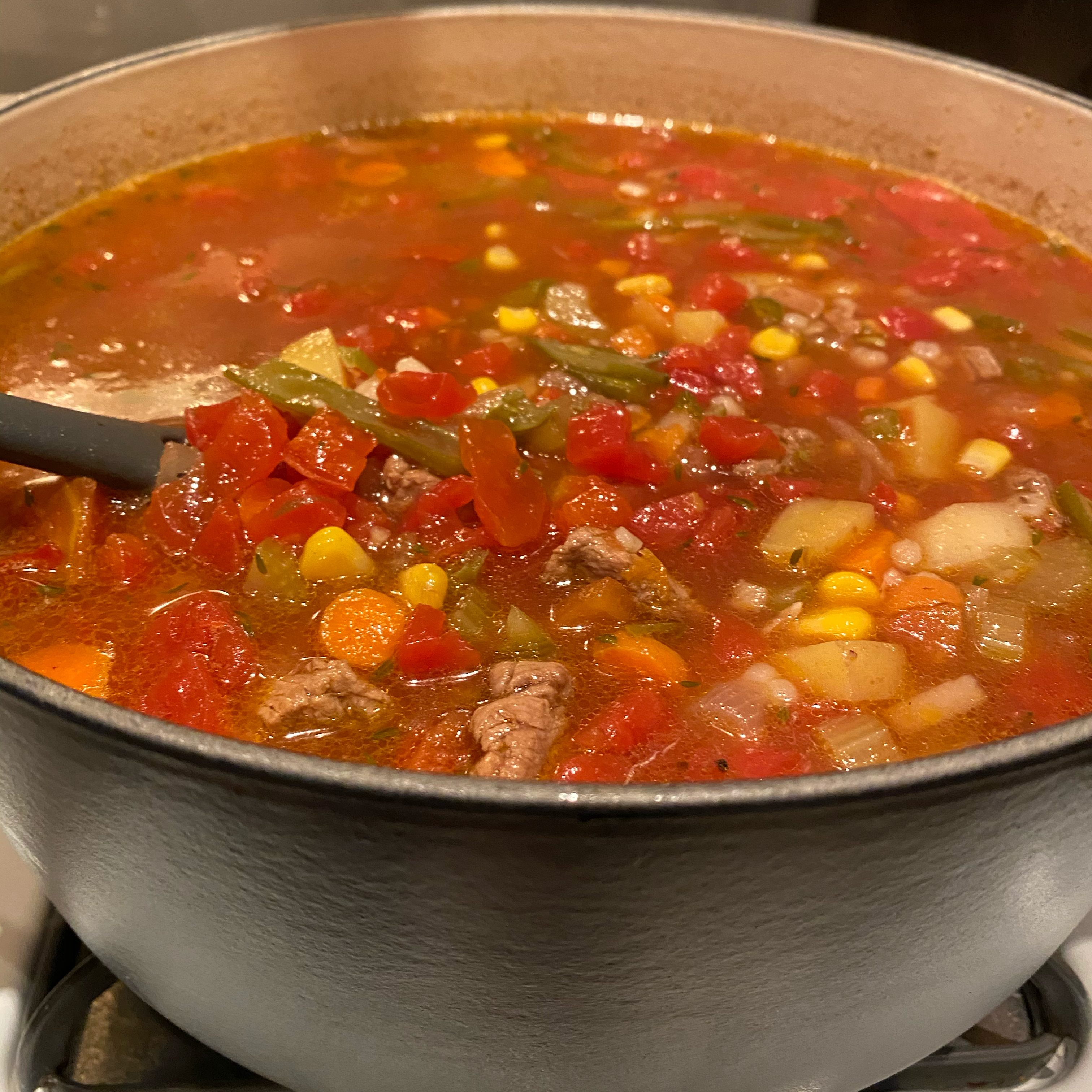 Dutch Oven Vegetable Beef Soup NateR