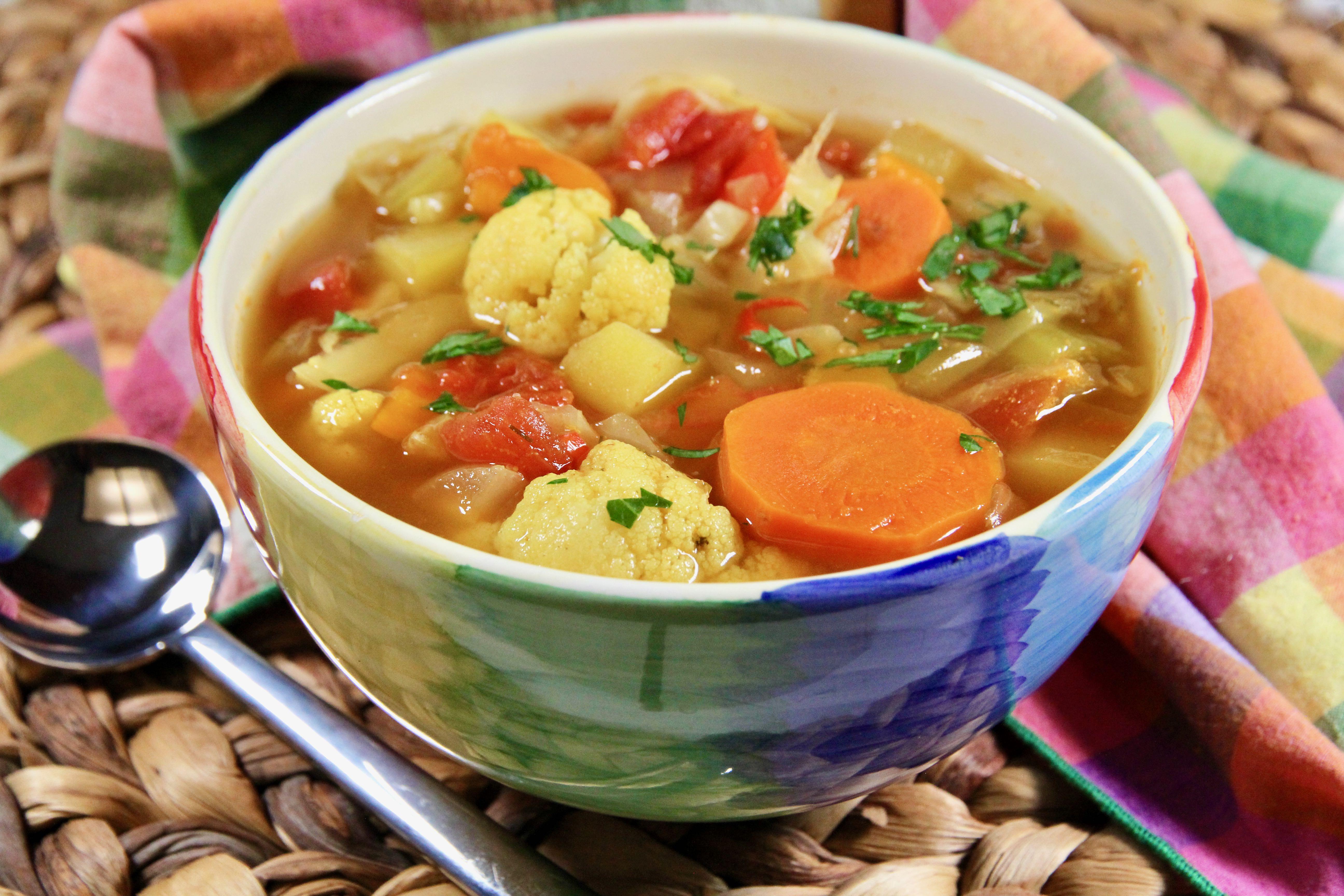 Fat-Free Vegetable Soup lutzflcat