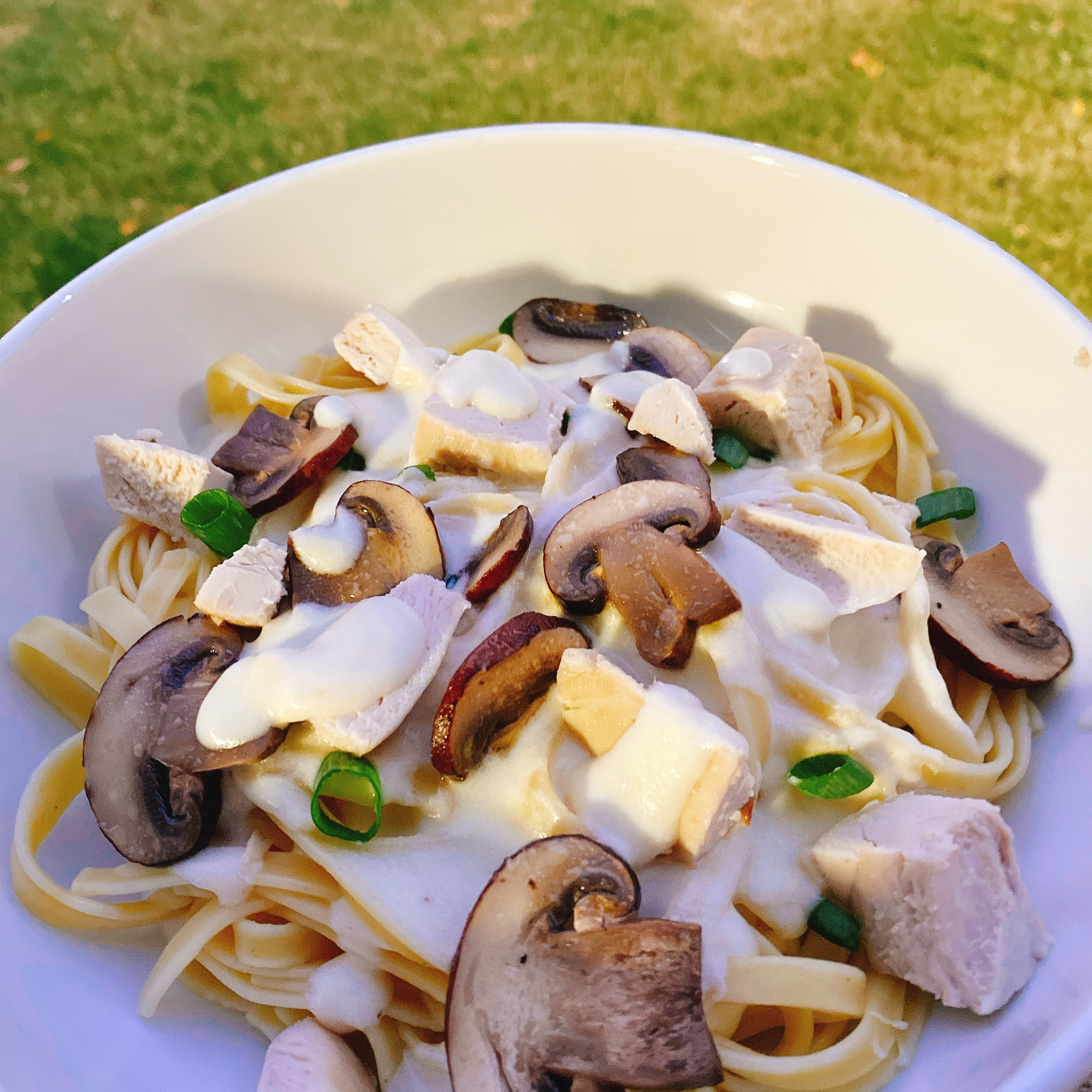 Fettuccine Alfredo with Mushrooms and Chicken