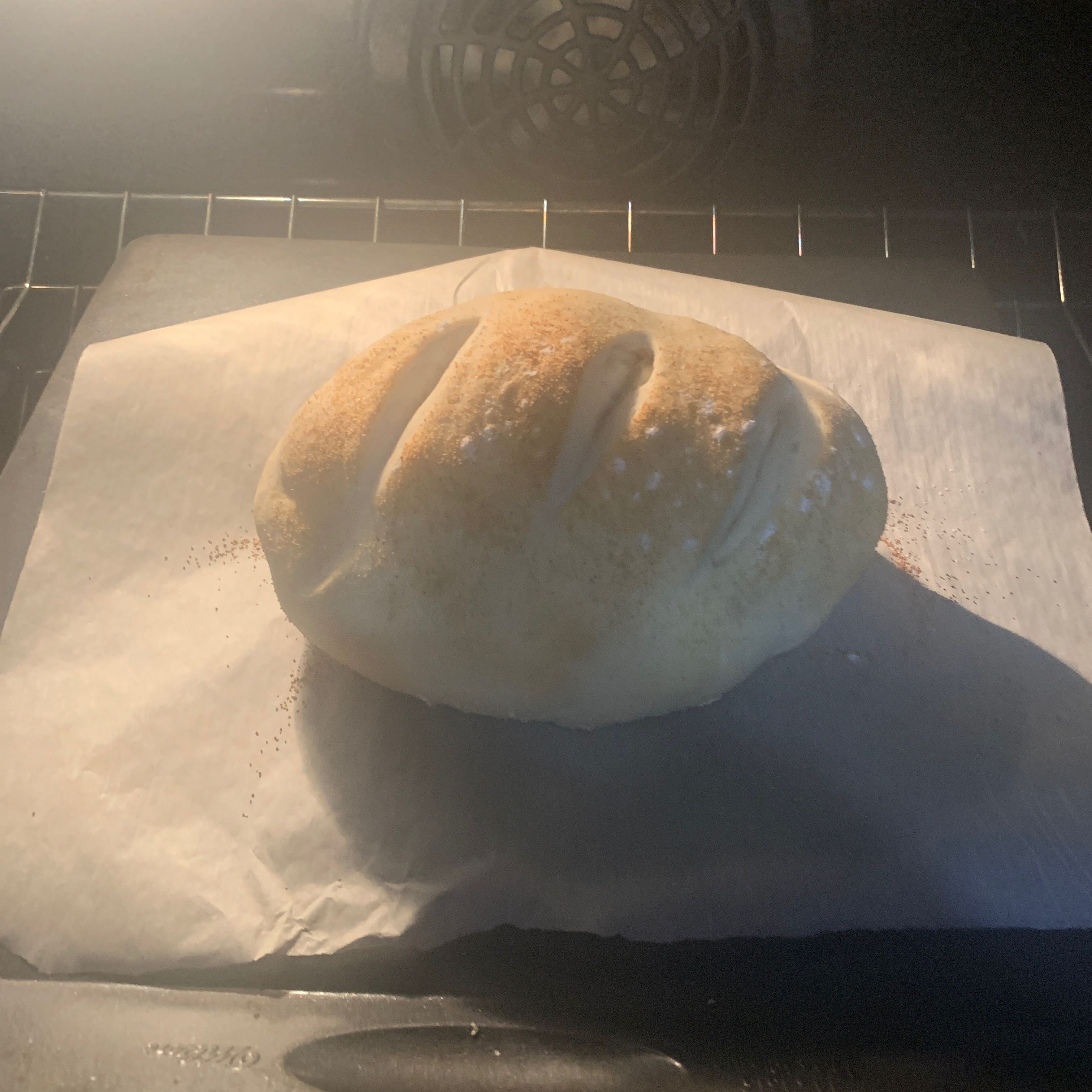 The French Bread