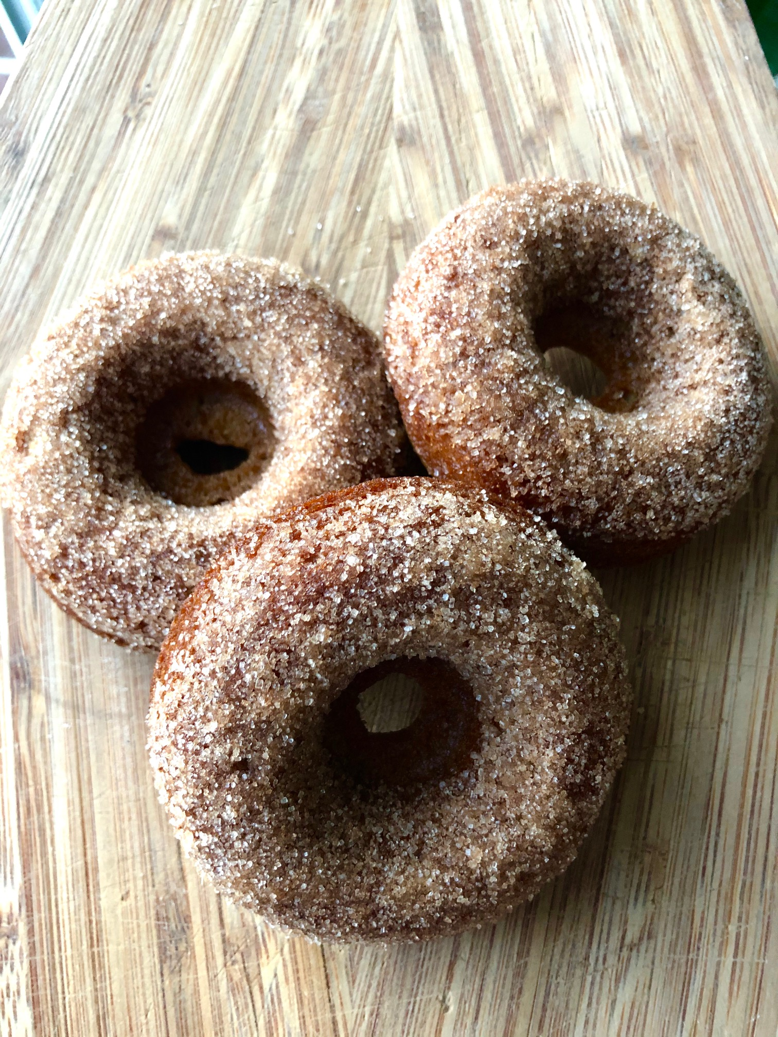 Baked Apple Cider Donuts J Leder