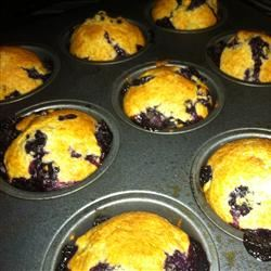 Best 100 Calorie Blueberry Muffins