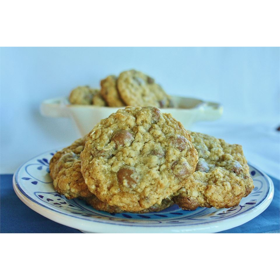 Chocolate Chip Oatmeal Cookies naples34102
