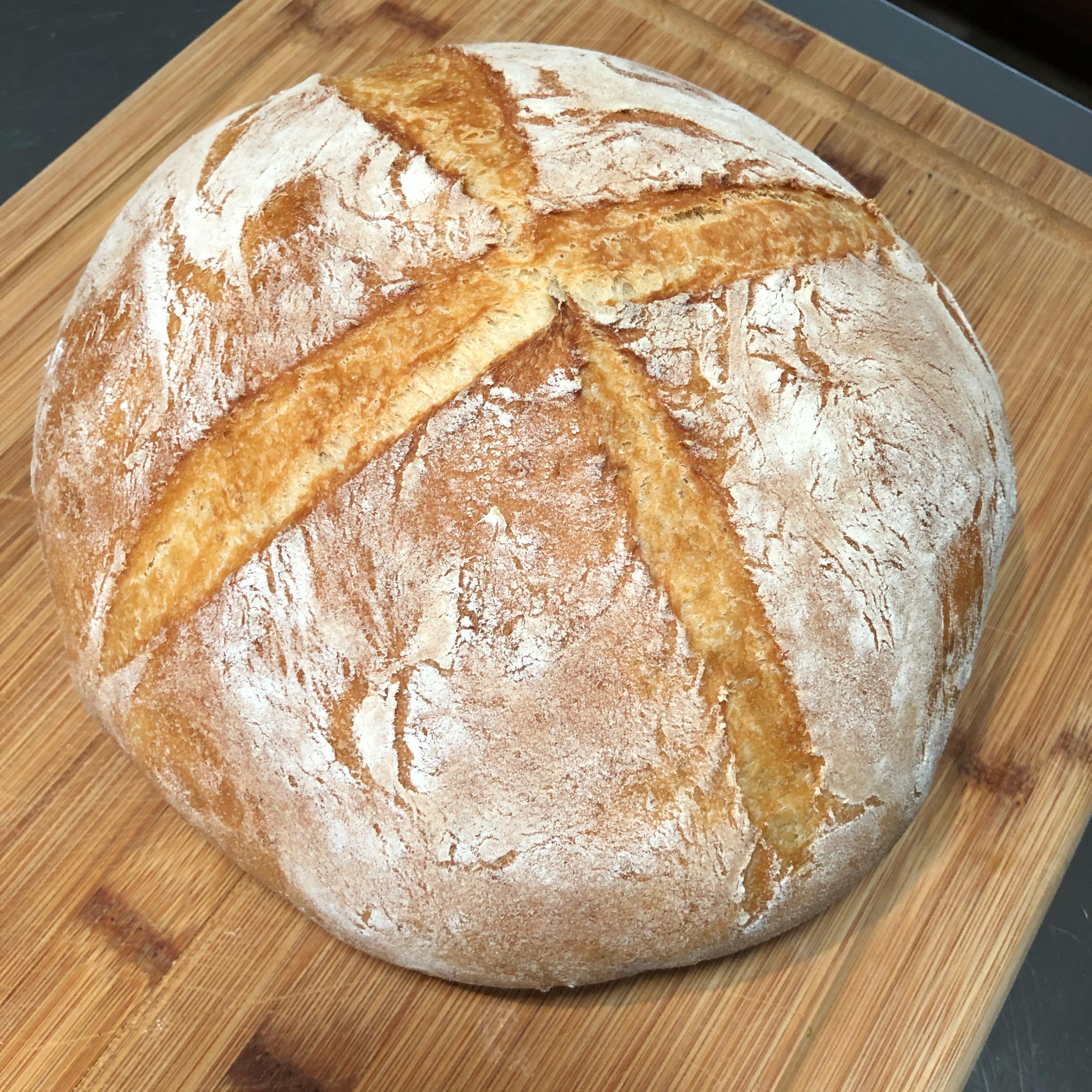 Crusty Dutch Oven Bread TAMONEILL