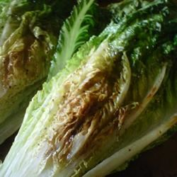 Grilled Romaine mommyluvs2cook