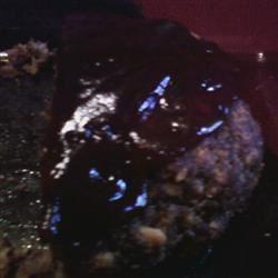 Savory Venison Meatloaf manderz406