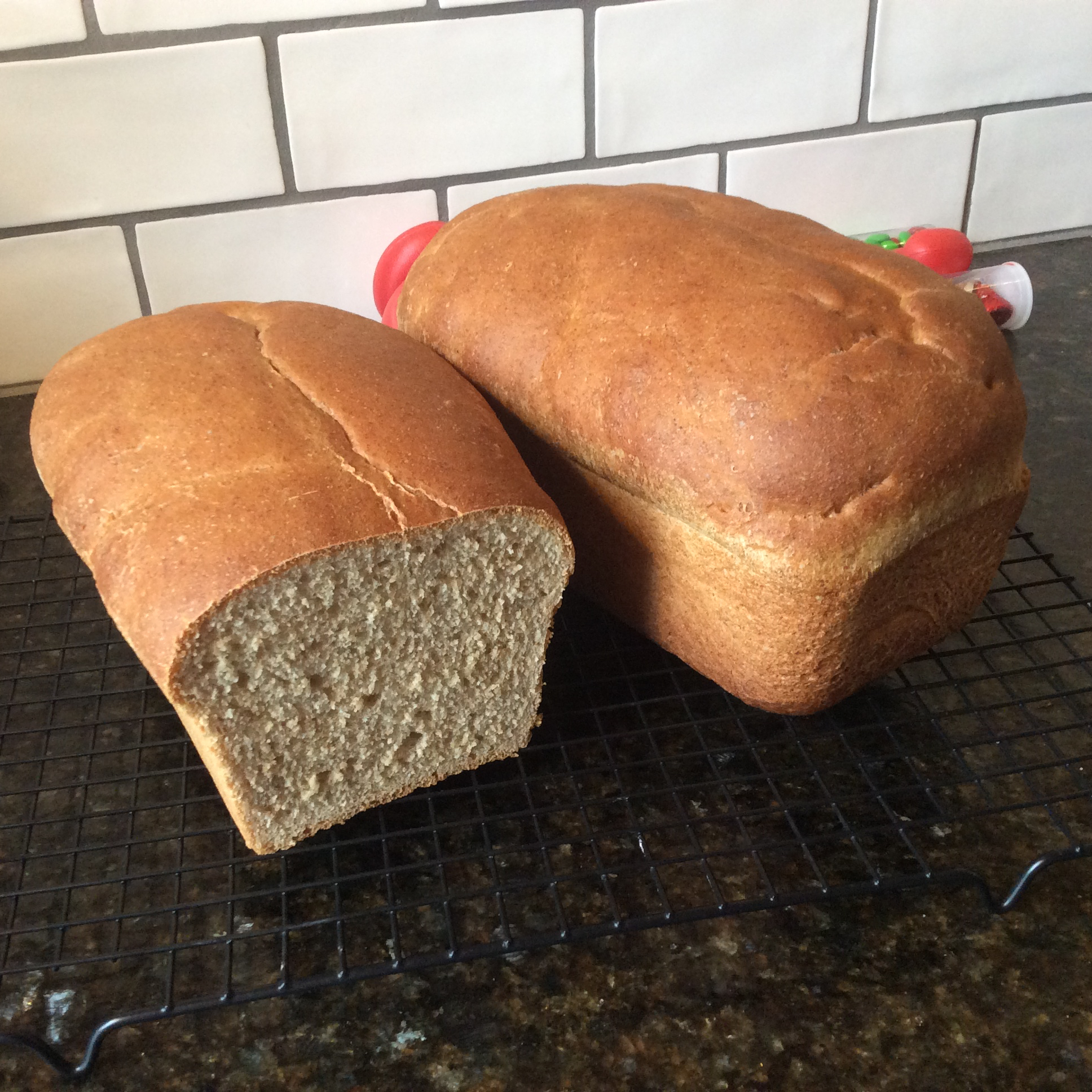 Honey Wheat Bread II laura