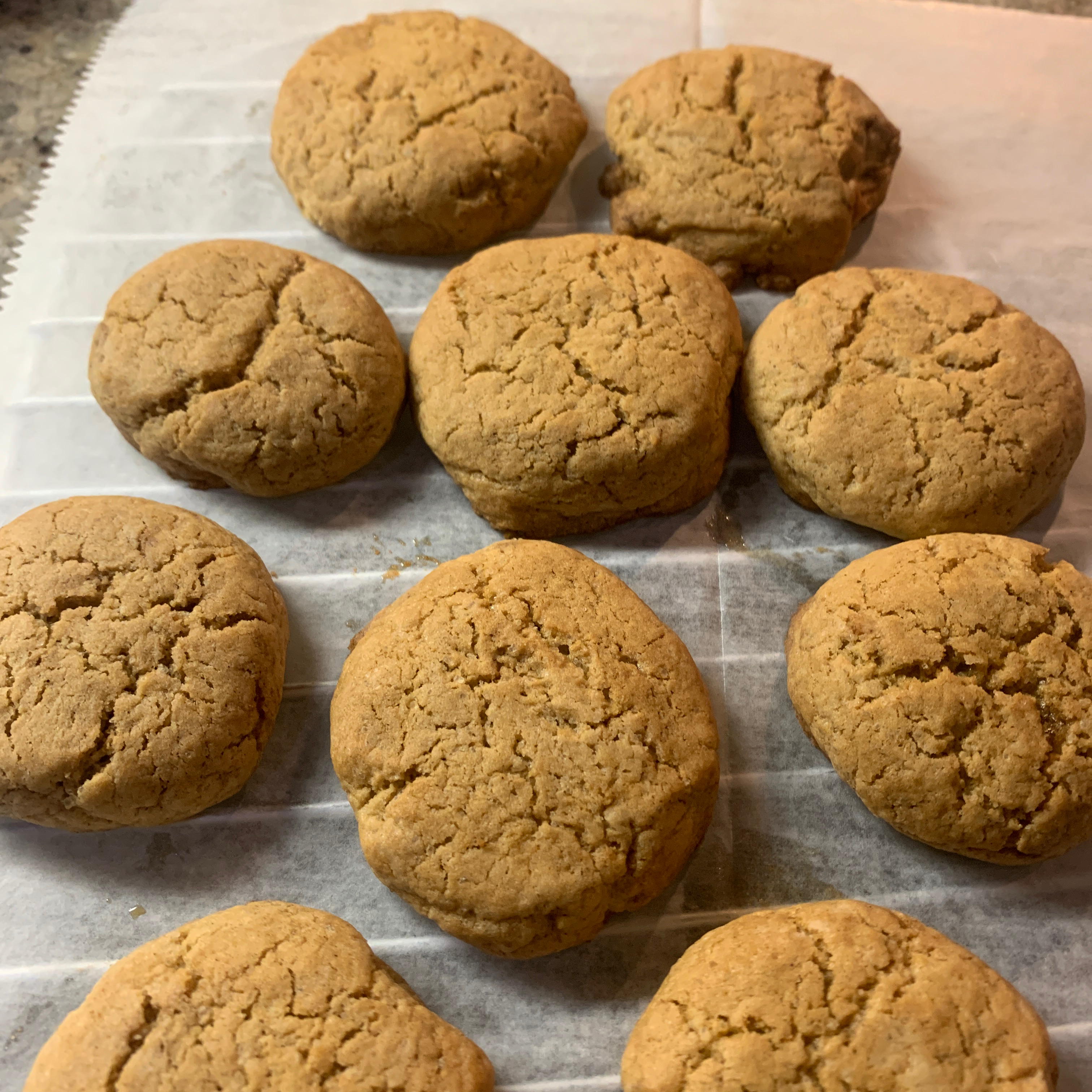 Northland Cookies Nadia Trufahnestock