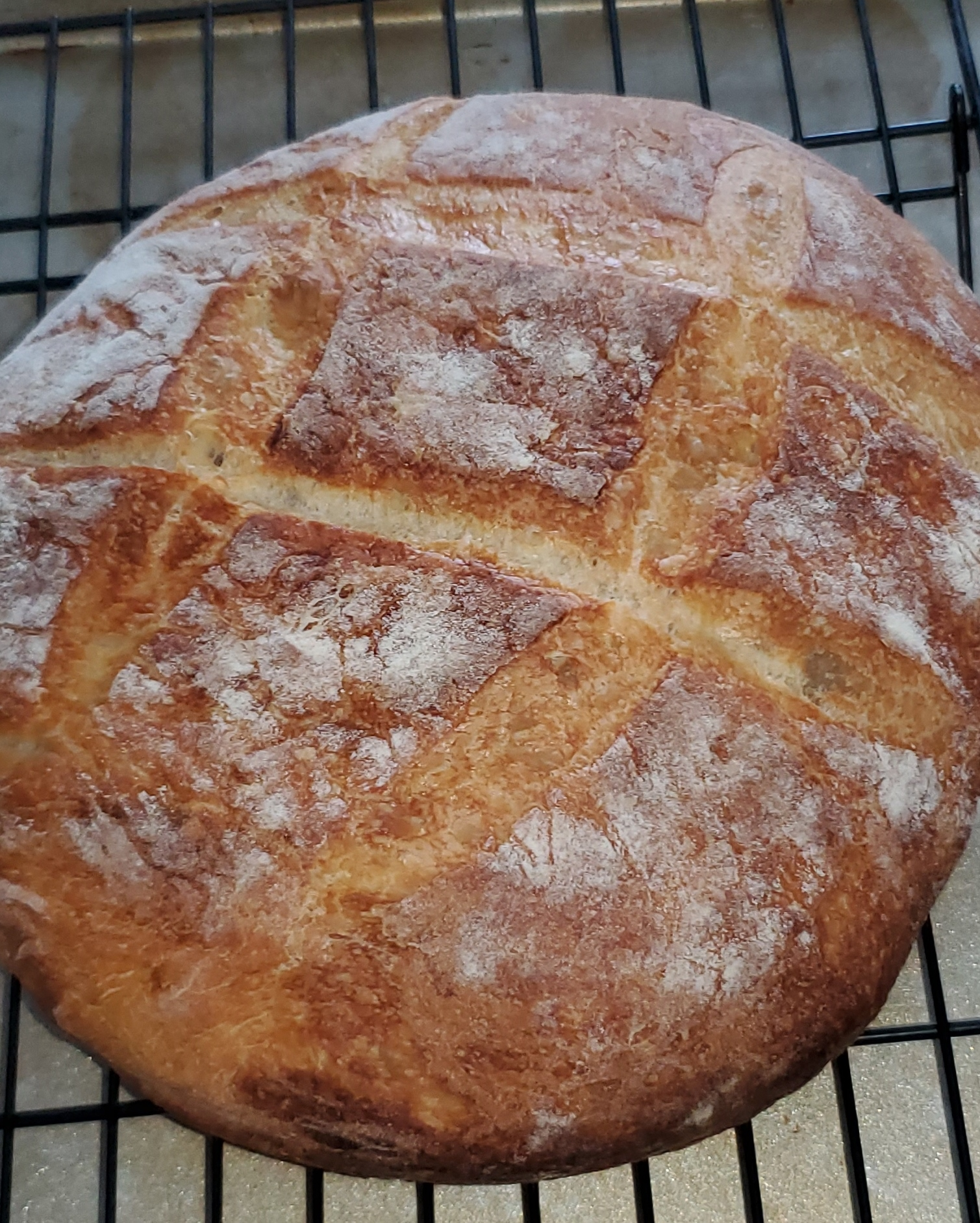 Instant Pot® Crusty No-Knead Bread Tommy Lucca