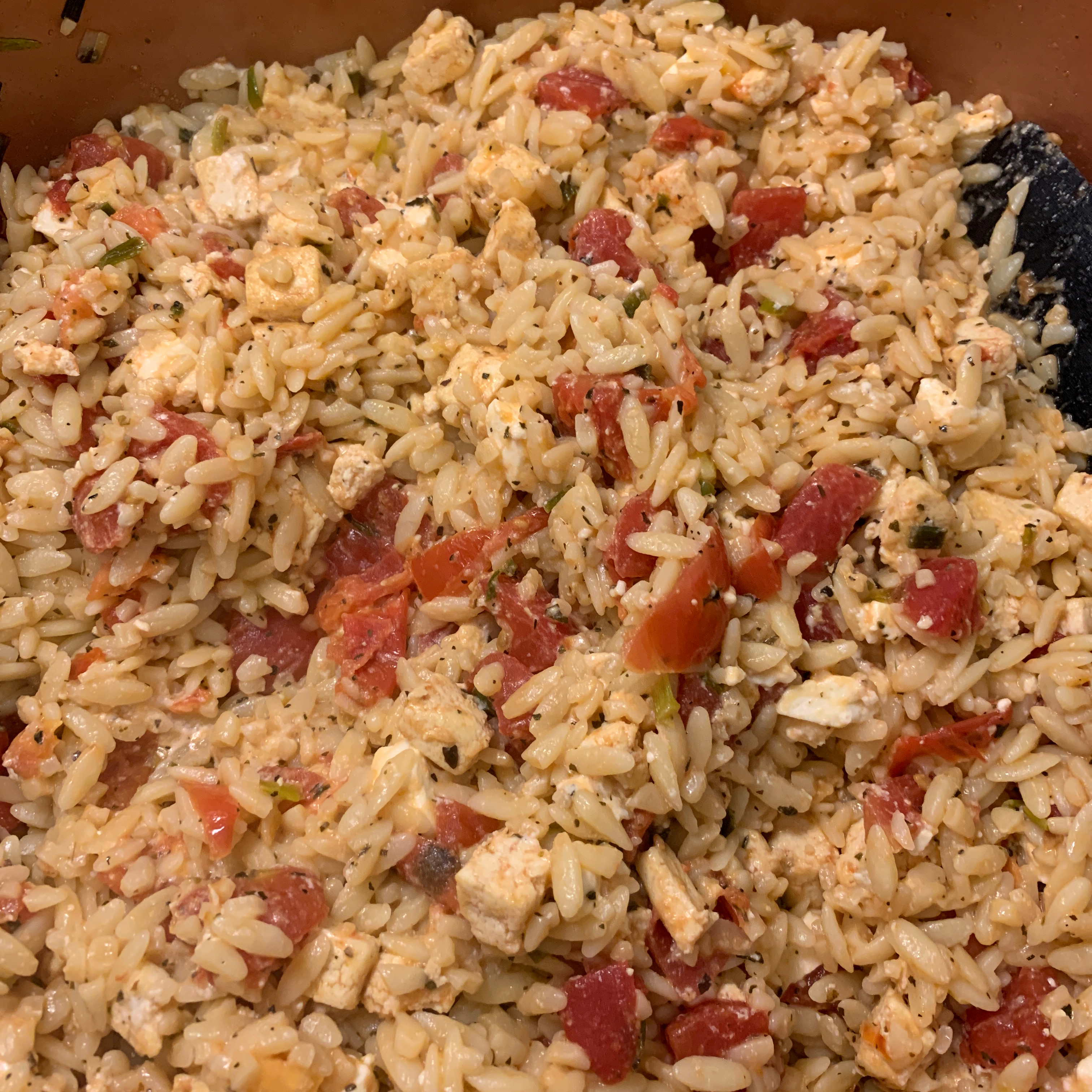 Orzo with Tomato and Fried Tofu Debby Veltri