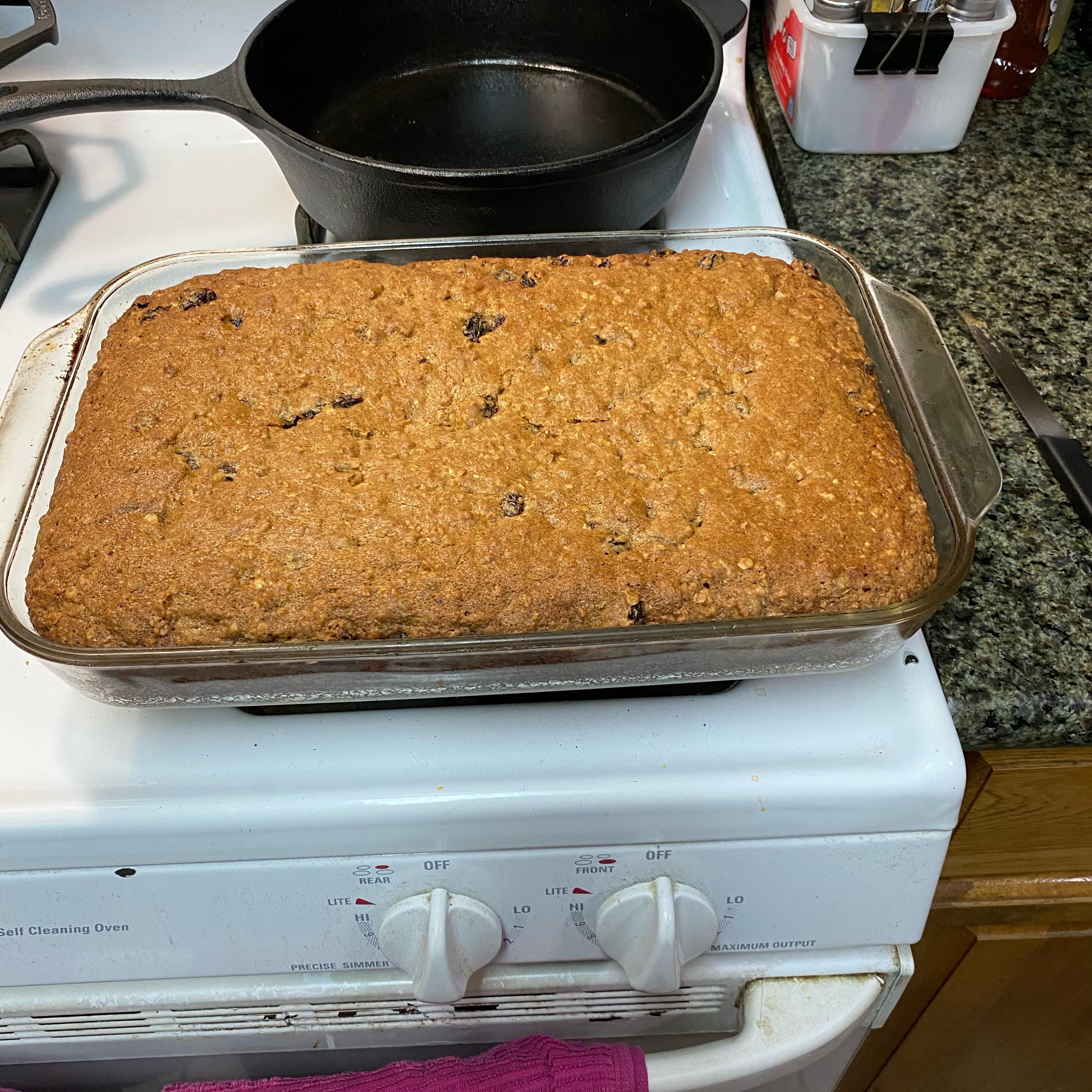 Oatmeal Raisin Cookies III Lore Apted