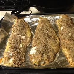 Pecan-Crusted Trout MrsBPeaPot