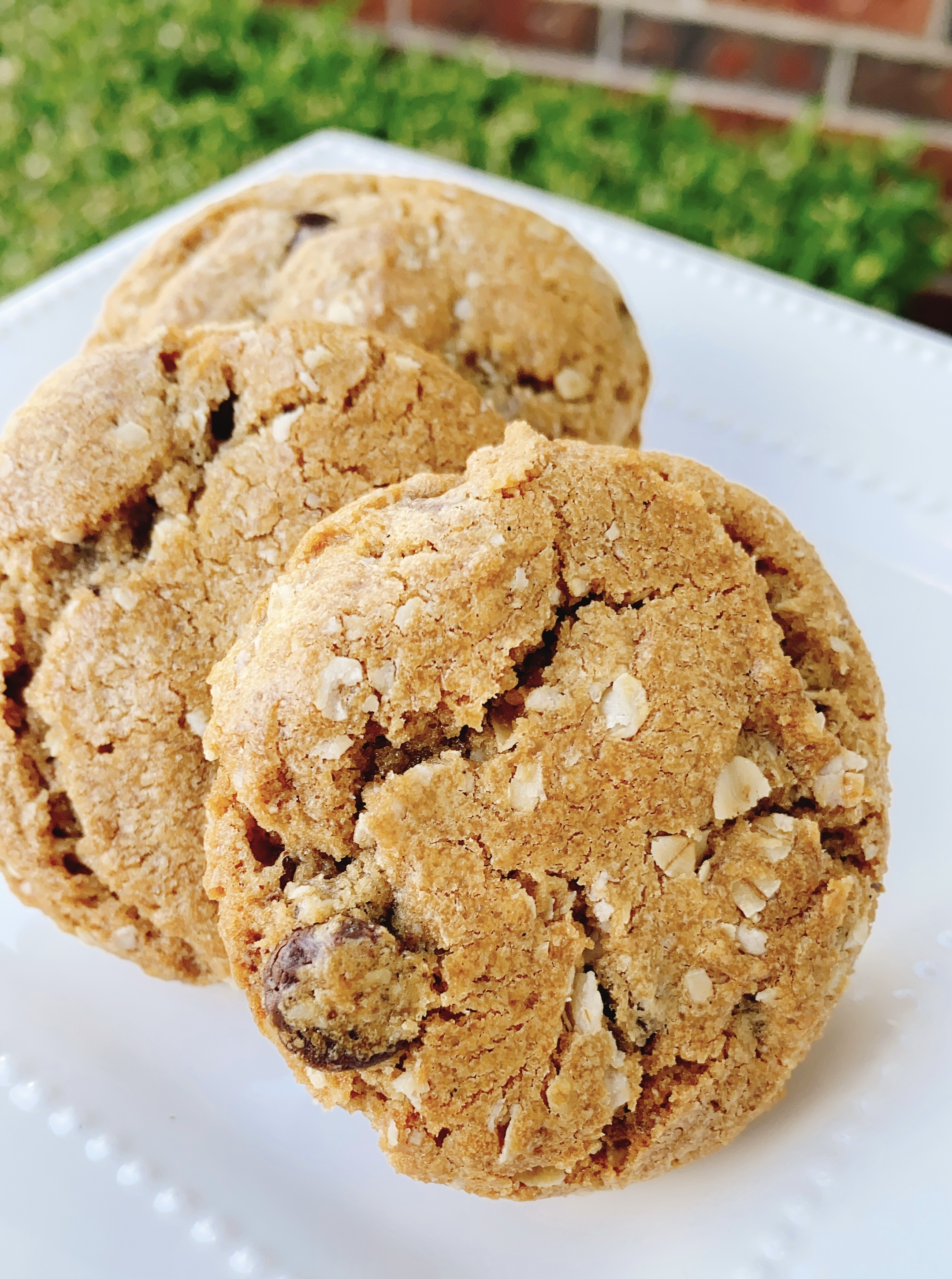 Brown Butter-Oatmeal Chocolate Chip Cookies
