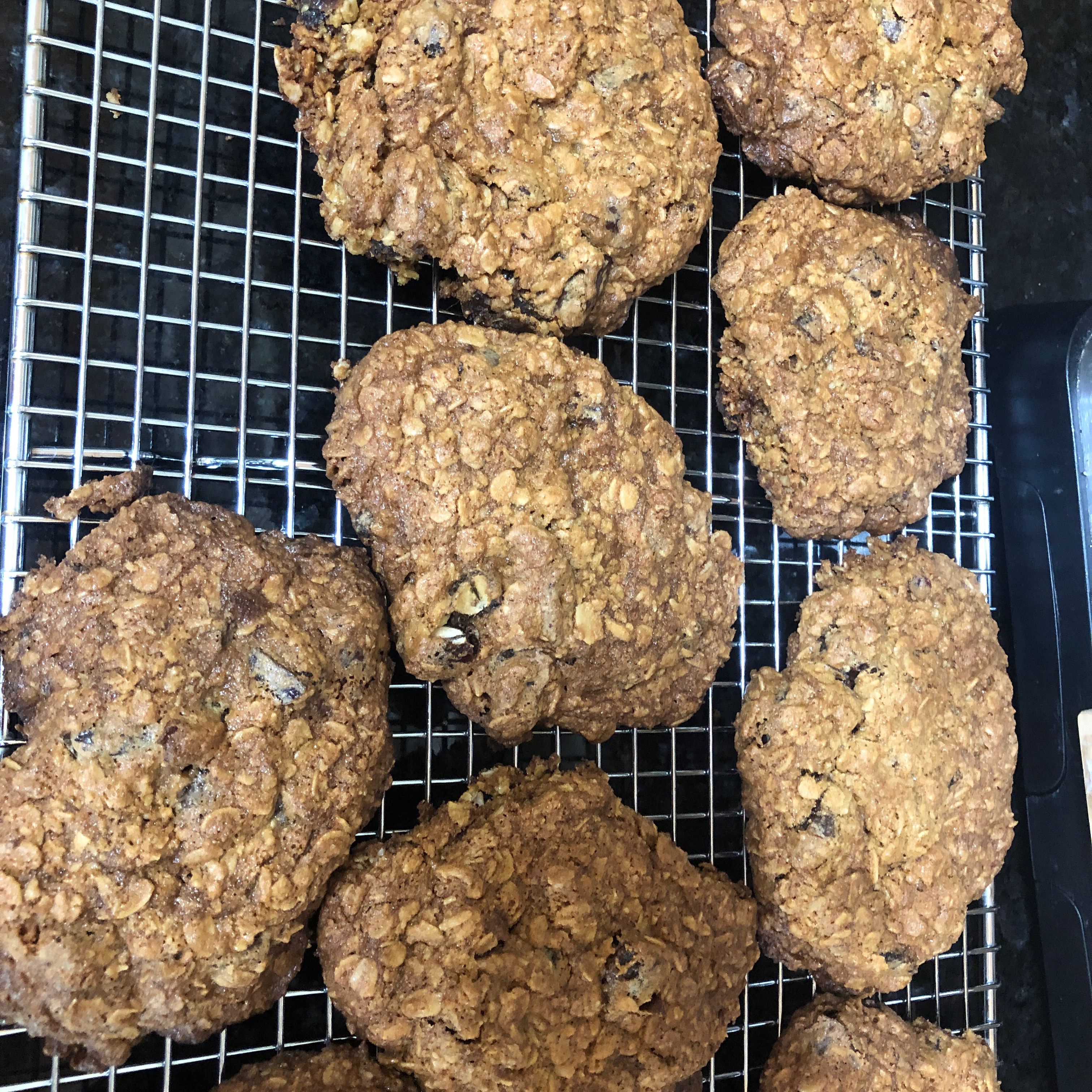 Toasted Oats Cookies