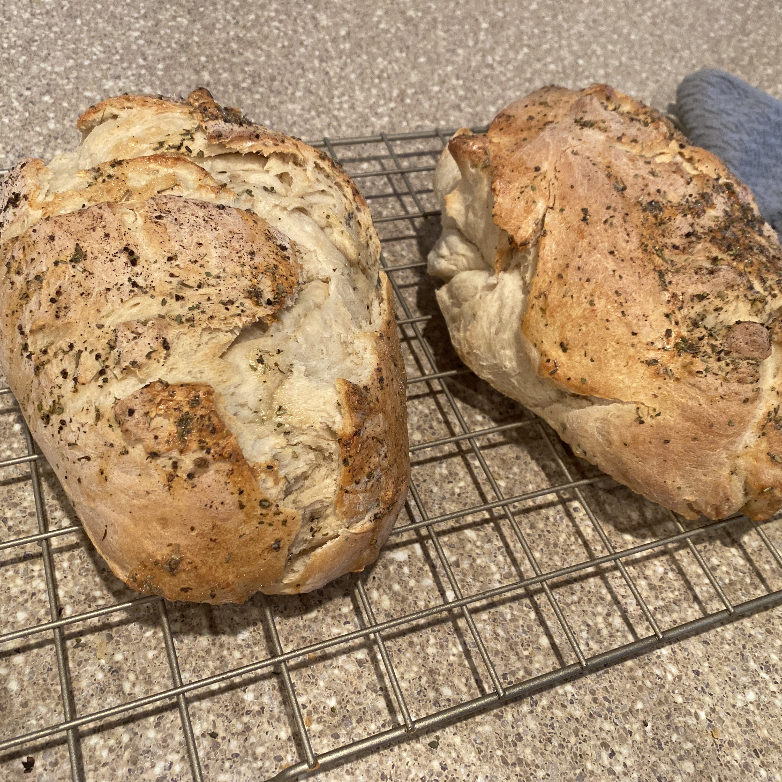 Pain de Campagne - Country French Bread