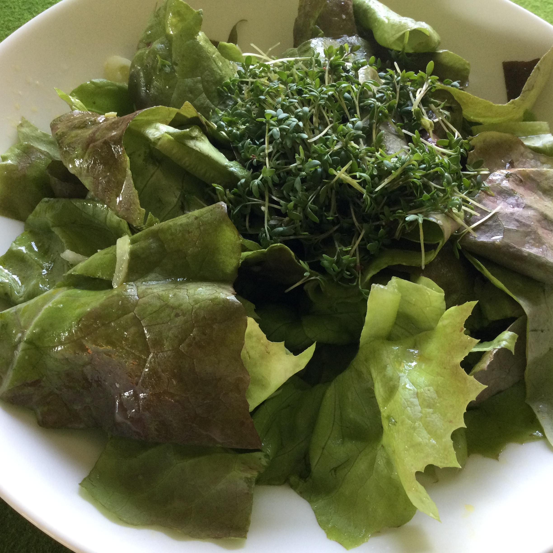 Green Salad with Garden Cress