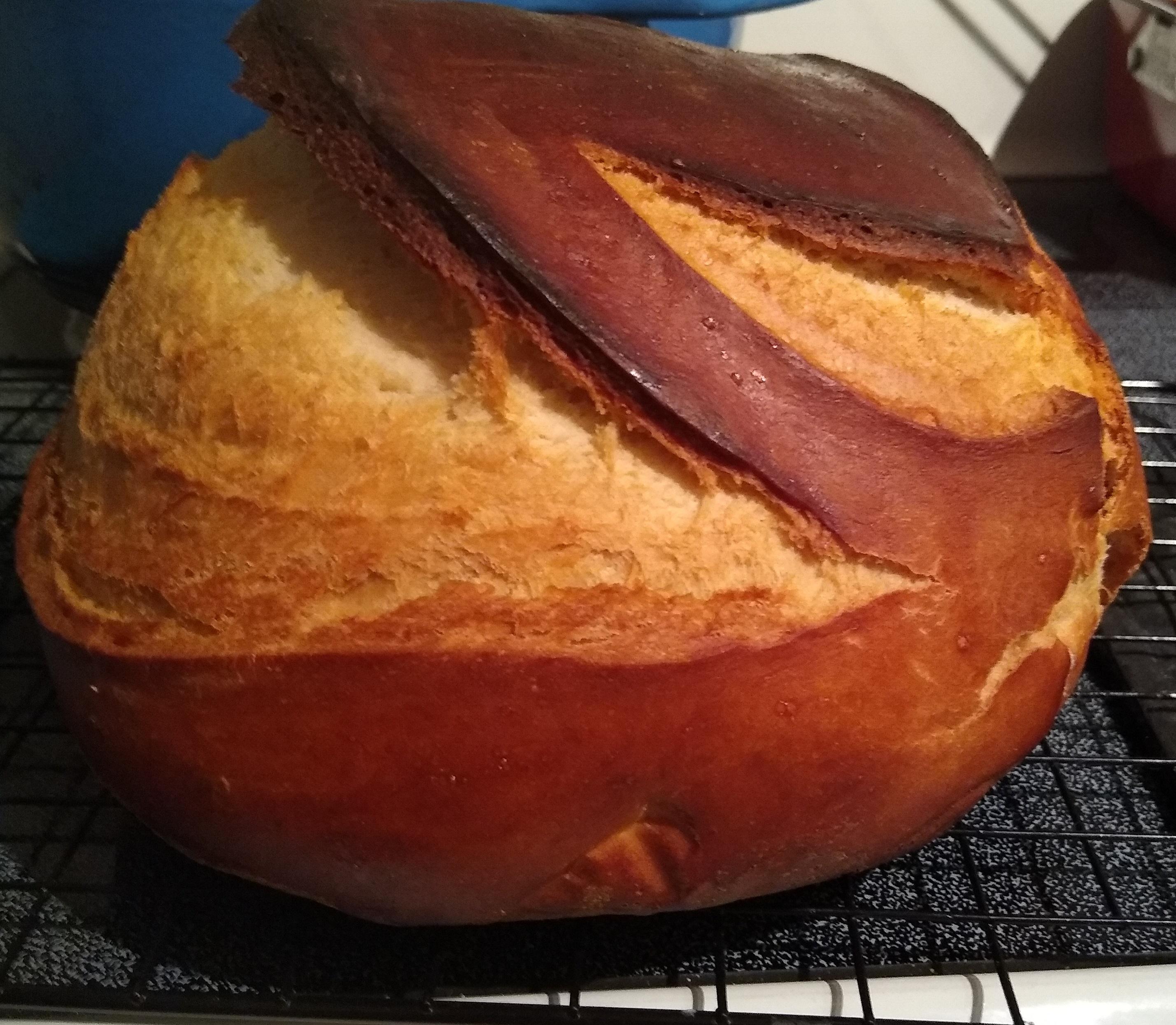Dutch Oven Sourdough Bread Andrea Lyn