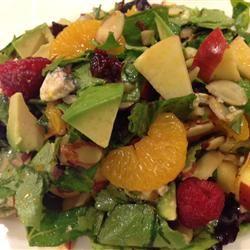 Apple Avocado Salad with Tangerine Dressing Jenn Harmon Jones