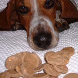 Diabetic Dog Treats