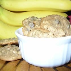 Spicy Oatmeal Cookies Gabsmom