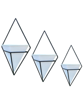 Contemporary diamond wall planter - admired by nature