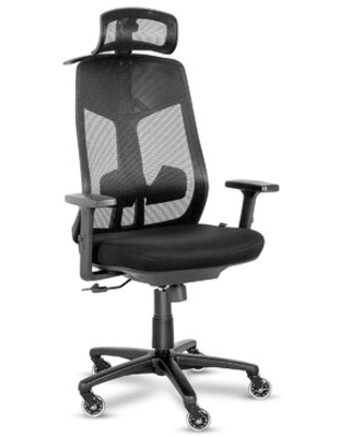 Ergonomic Mesh Office Chair Computer Chair With Adjustable Armrest And Headrest For Home Office - colorfow