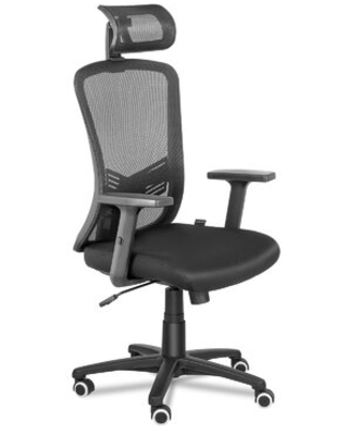 Ergonomic Office Chair High Back Mesh Computer Chair With Lumbar Support Adjustable Armrest Backrest And Flip up Headrest - colorfow