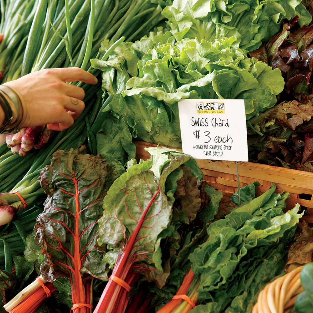 Gorgeous Swiss Chard, lettuces, and more from Blooming Glen Farms