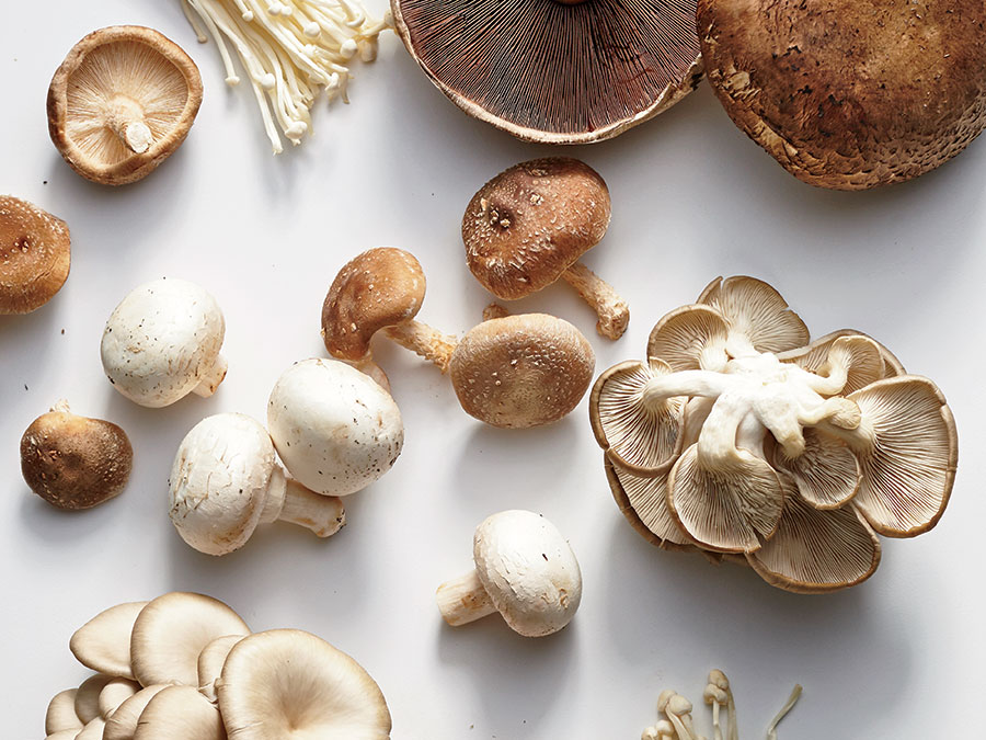 6 Kinds of Mushroom You Should Start Cooking With Today
