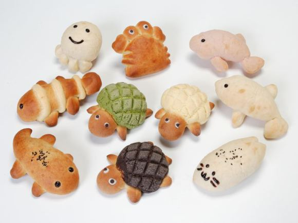 Cute breads from Kyoto Aquarium | Photo