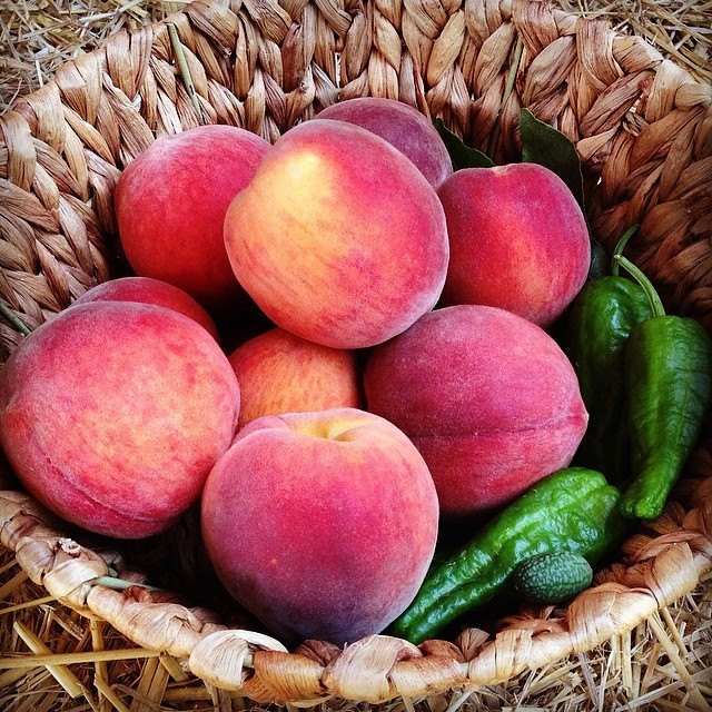 Basket of peaches harvested in our small orchard.