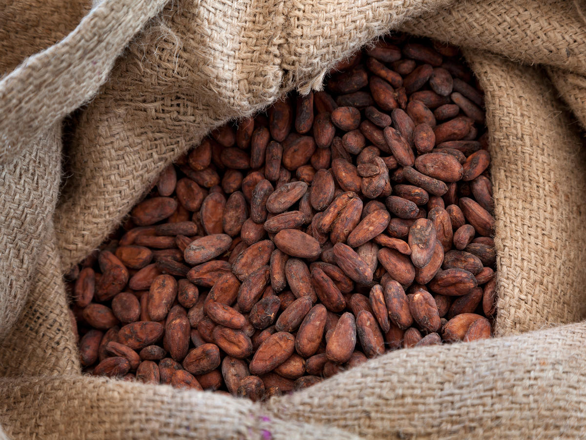 Getty Cocoa Beans in Bag