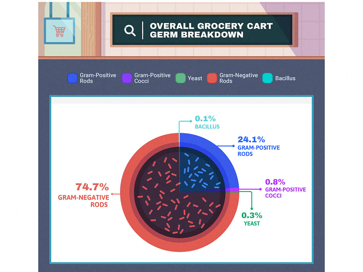 1711w Germs on Shopping Carts Infographic