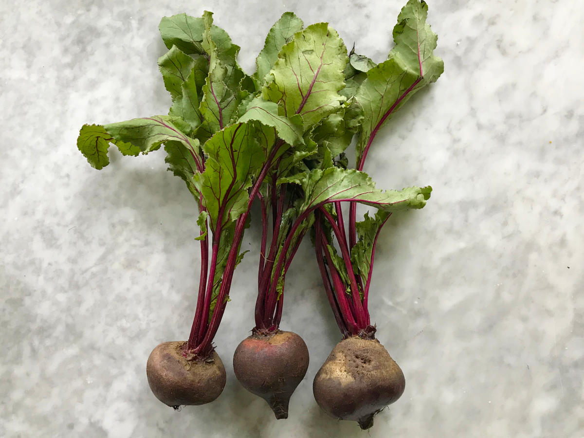 Beet Stems and Leaves