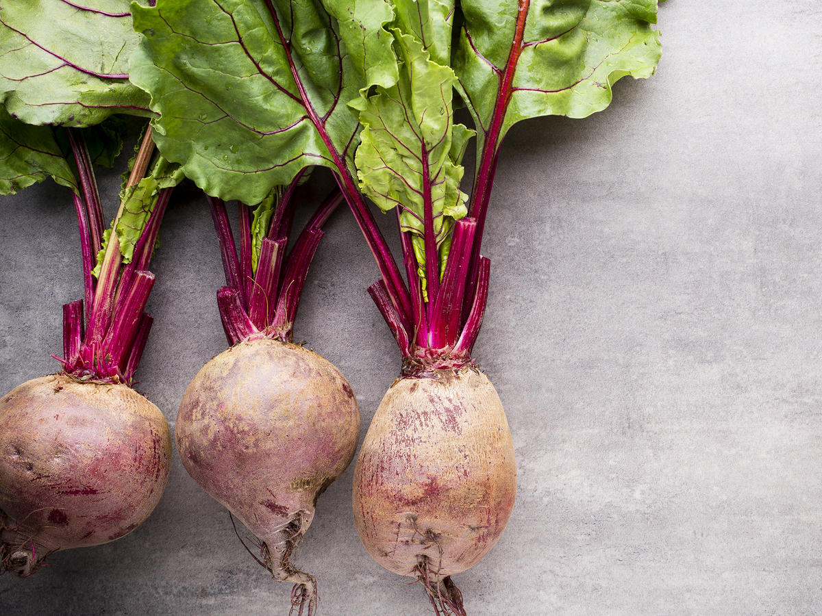 Beets EVERGREEN