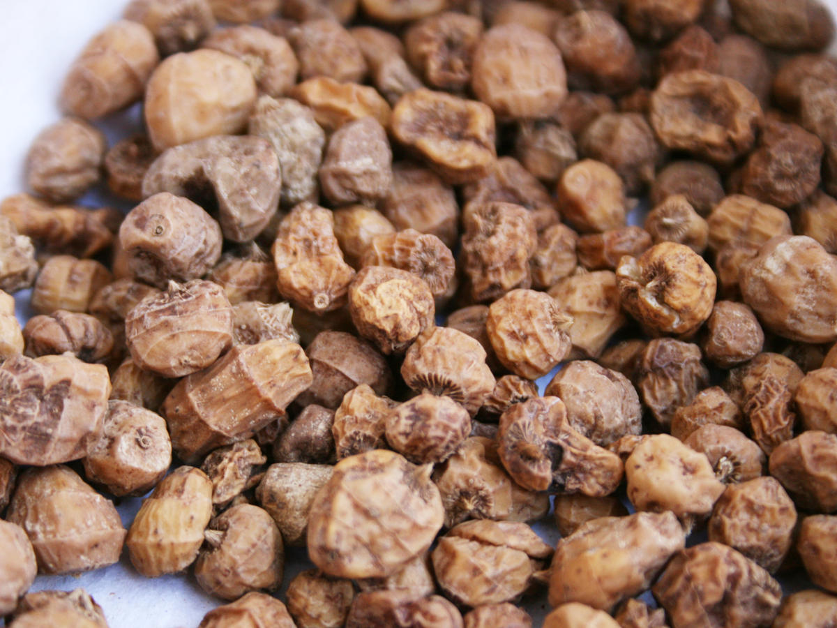 3 Reasons Why Tiger Nuts are About to Become the Next Big Superfood