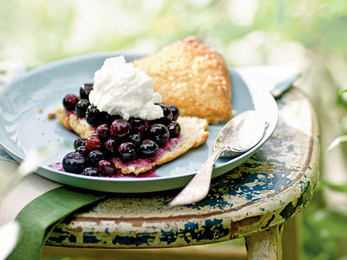 0906p85-blueberry-shortcake-x.jpg