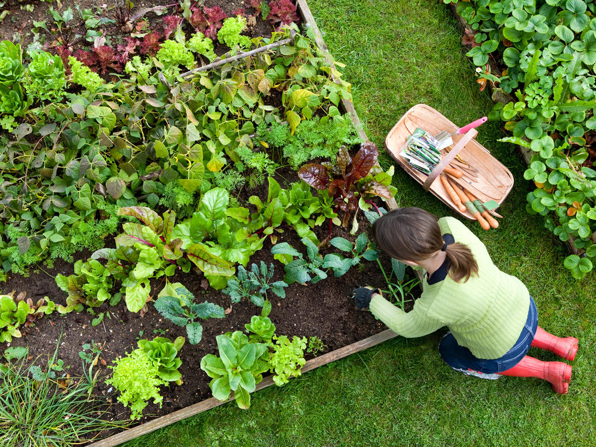 1605w-getty-yard-garden-farm.jpg