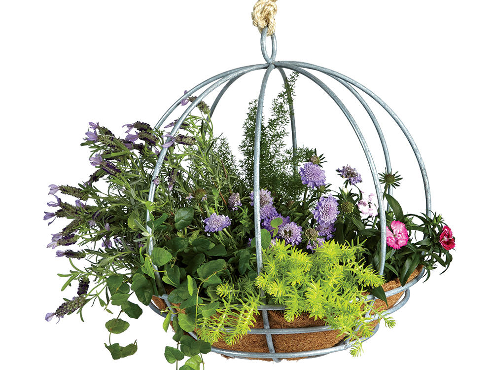 Garden Gear Sphere Basket