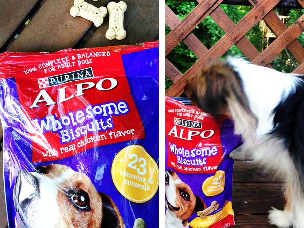Alpo Wholesome Biscuits with Real Chicken Flavor