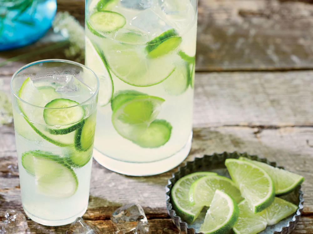 1606 Cucumber-Lime Infused Gin and Tonic - Sunday Strategist