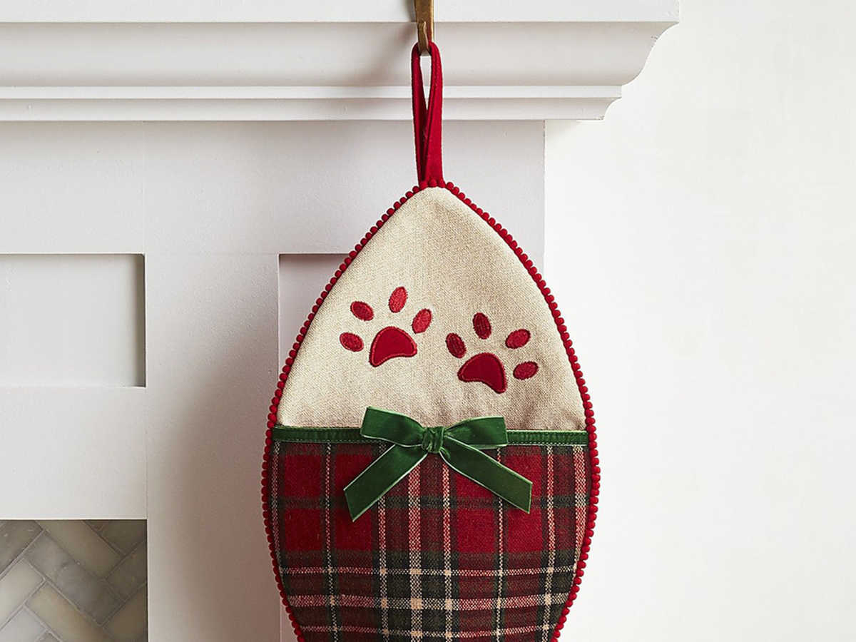 Pier1 Plaid Fish Cat Stocking