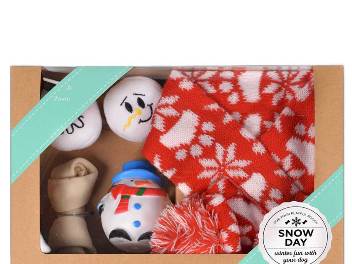 Target Snowday Dog Toy Pack
