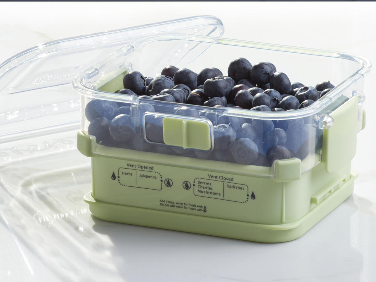 Blueberries storage container