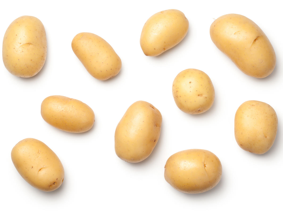 1511 Potatoes